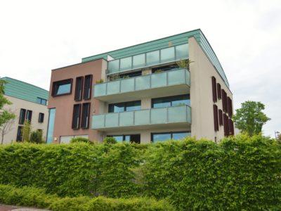 RiedbergImmobilien_Wohnung_Skylineblick_Quartier_Schoene_Aussicht_Hausansicht2