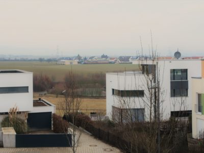 RiedbergImmobilien_Doppelhaus_ars_areal_Quartier_Ginsterhoehe_Ausblick