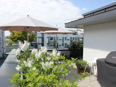RiedbergImmobilien_Doppelhaus_take5_Dachterrasse_Quartier_Schoene_Aussicht