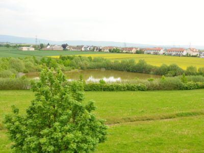RiedbergImmobilien_Villa_am_Kaetcheslachpark_Ausblick_Kaetcheslachteich